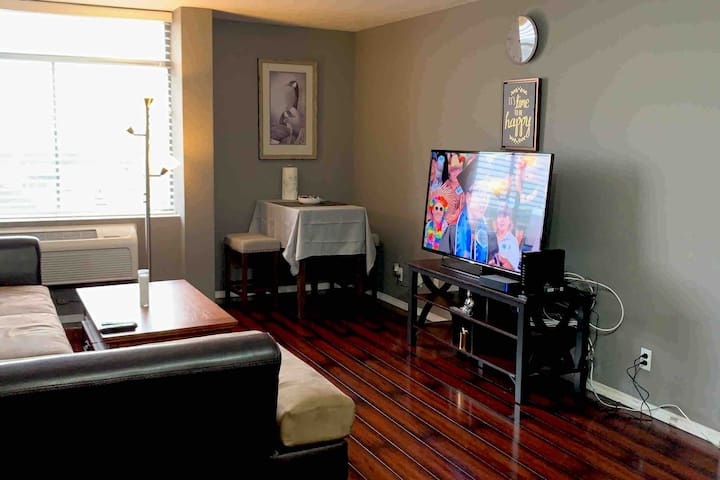Condo 1 bedroom close to Gallery, Downtown..