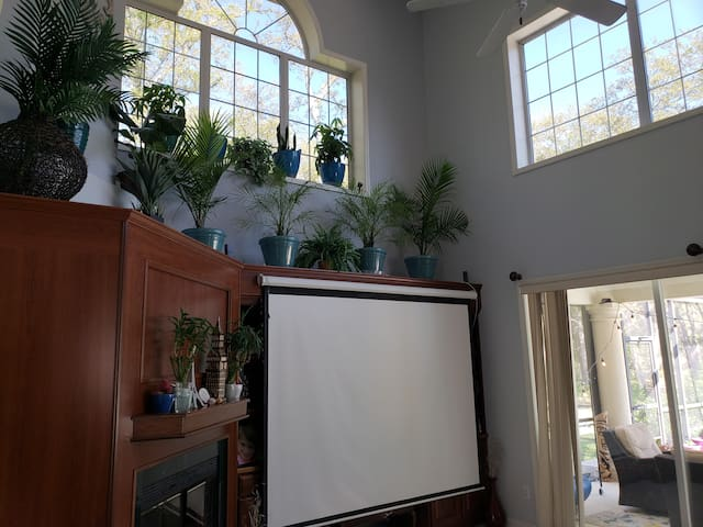"""120"""" projector screen with 1080HD projector.  Fireplace.  Large comfy couch sleeps three adults easily if the 4th bedroom's and air mattresses are not comfy enough."""