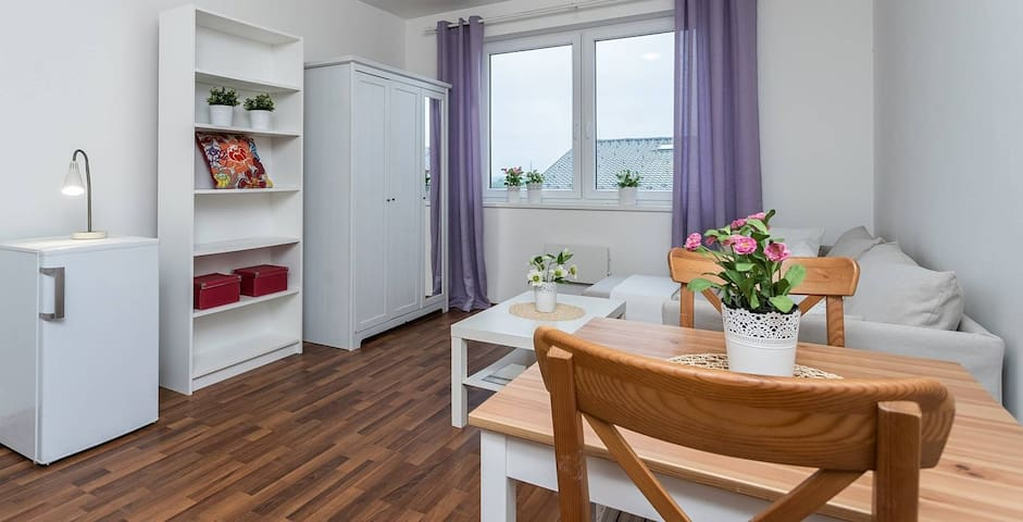 1+1 Quiet flat, 12min Prague Airport, 38min centre