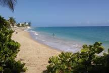 Ocean Park Beach - A 2 min walk !