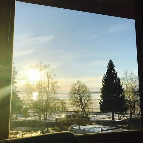 North Park Avenue / Ocean & Mountain View DOWNTOWN - Anchorage - Apartment