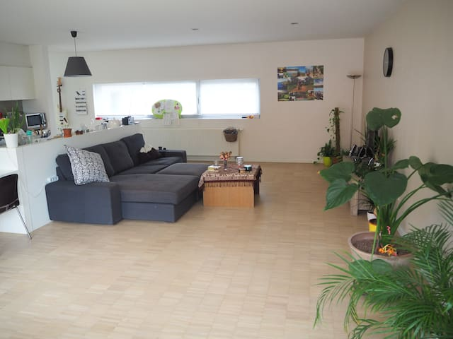Spacious duplex appartment with sunny balcony! - Antwerpen - Apartment