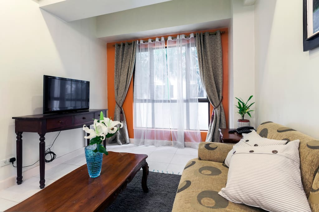 Living area with cable TV, WiFi and sofa