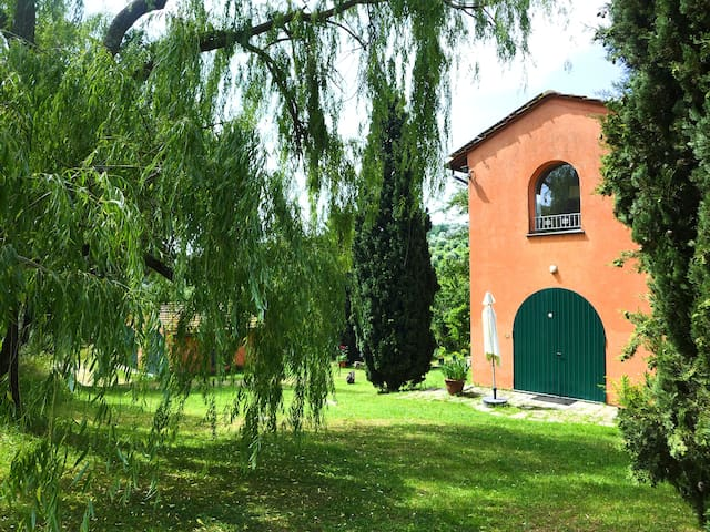Converted Old Barn Home between Lucca and Pisa