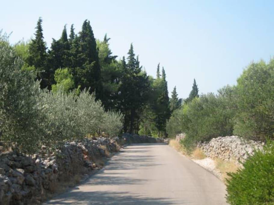 Biciklistička staza