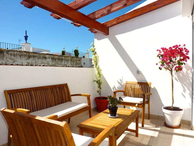Penthouse in old town of Seville - Seville - Apartment
