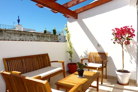 Penthouse in old town of Seville - Sevilla