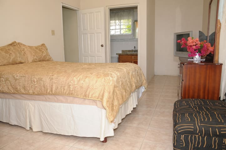 Orchard View Guest House Rm # 2 - Hopewell - Appartamento
