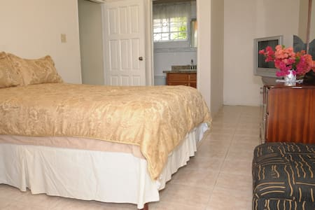 Orchard View Guest House Rm # 2 - Hopewell - Apartamento