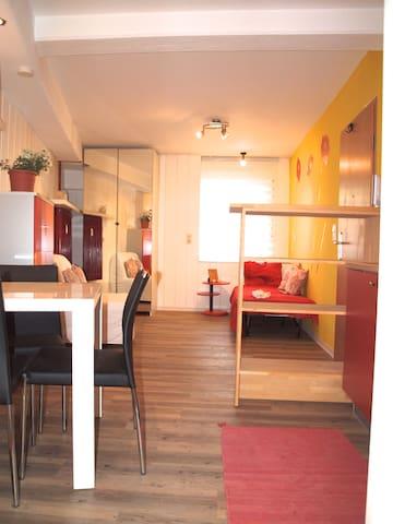 Lucky Place - gegenüber des IHOE - Heidelberg - Wohnung