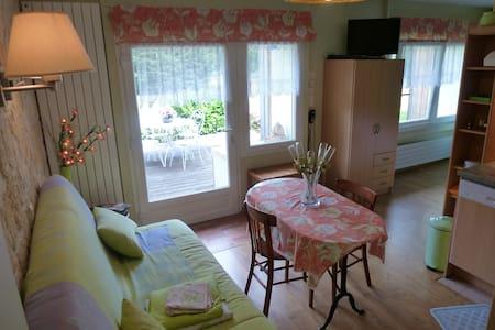 (D1) Très beau studio de 1 / 4 pers, 3 étoiles - Le Tholy - Lägenhet