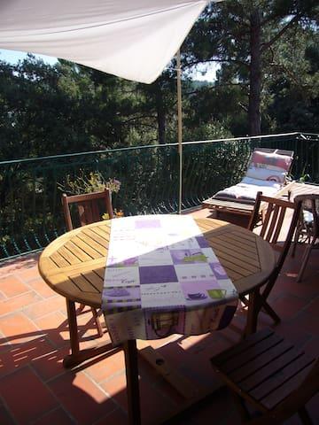 Maison ensoleillée et petite piscin - La Bastide-des-Jourdans - Talo