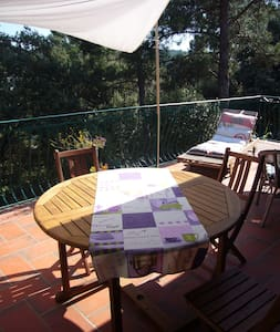 Maison ensoleillée et petite piscin - La Bastide-des-Jourdans