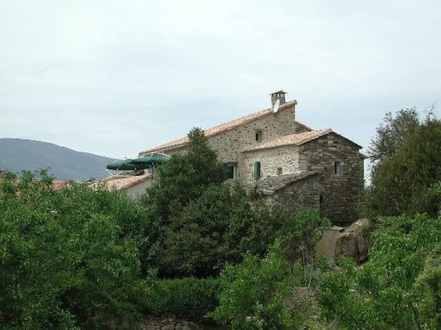 Cévennes, au pied du Mt Lozère - AUJAC - Dům