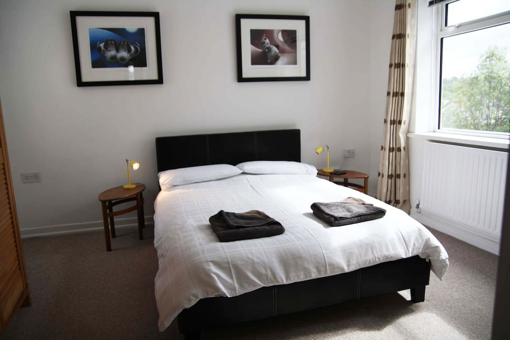 The bedroom - double bed, mirror, freeview TV, bedside lights - plenty of sockets.