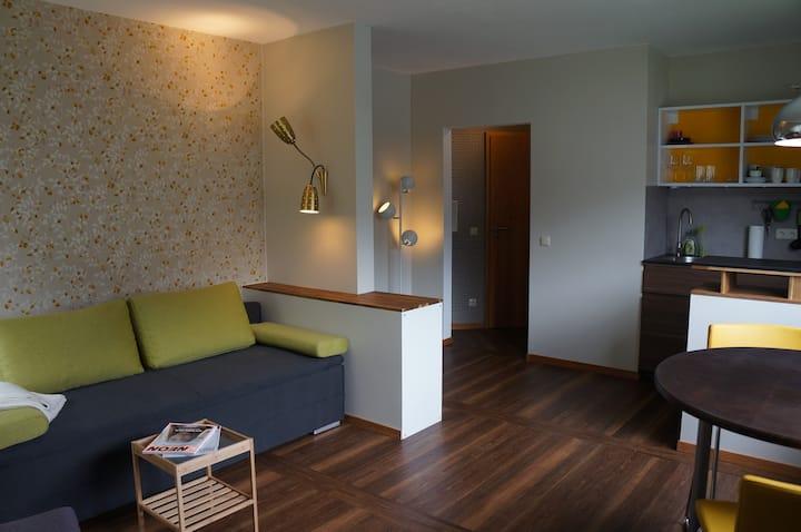 Sonnige, komfortable Einzimmerwohnung in Aachen