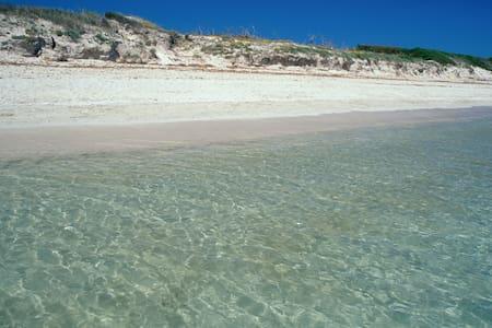 Alcudia, vacaciones en Mallorca !!