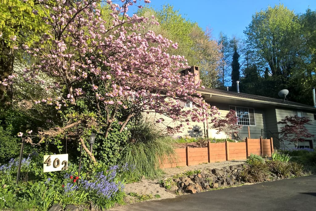 Rooms For Rent Kelso Wa