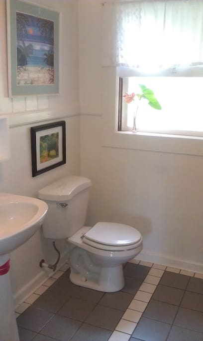 Bathroom with shower to the right