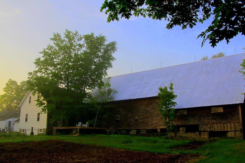The Barn at dawn (back yard view)