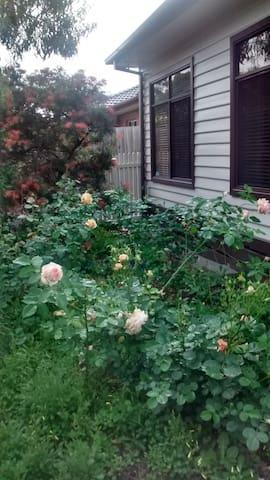 Rose Cottage walk to Train/Eastland - Ringwood