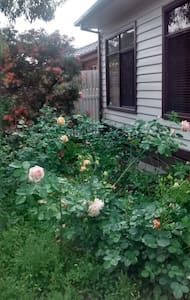 Rose Cottage walk to Train/Eastland - Ringwood - 一軒家