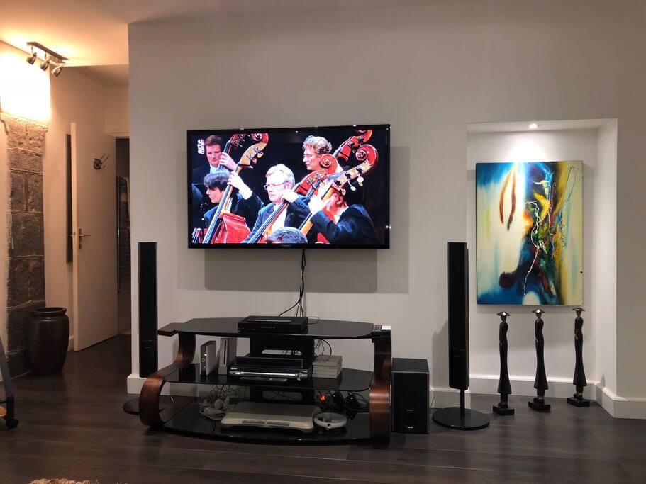 Écran panoramique pour vos soirées, box avec Wifi et accès internet illimité, home cinéma, console Wii et ses accessoires
