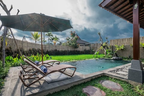 Take A Dip In Your Private Pool, Relax, Enjoy Bali