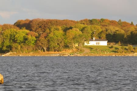 The Fishing Lodge lakeshore B&B - Galway