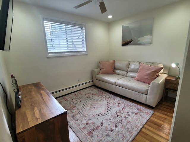 Smaller second bedroom with queen size pull out couch bed.