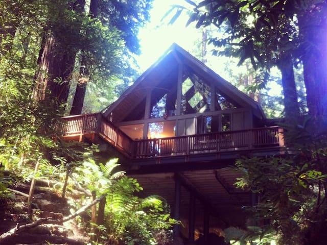 Contemporary home.. nature preserve - Woodside - Casa