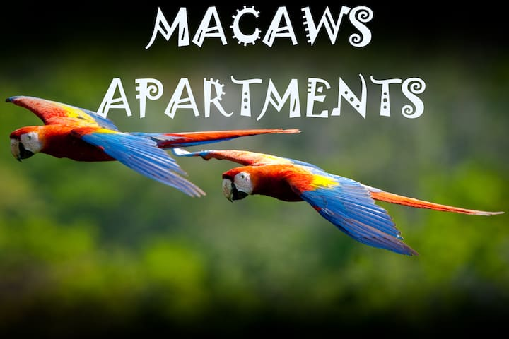 Uvita, Macaws Apartments #1