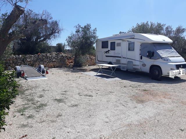 (3) Campsite near the Ocean but really calm