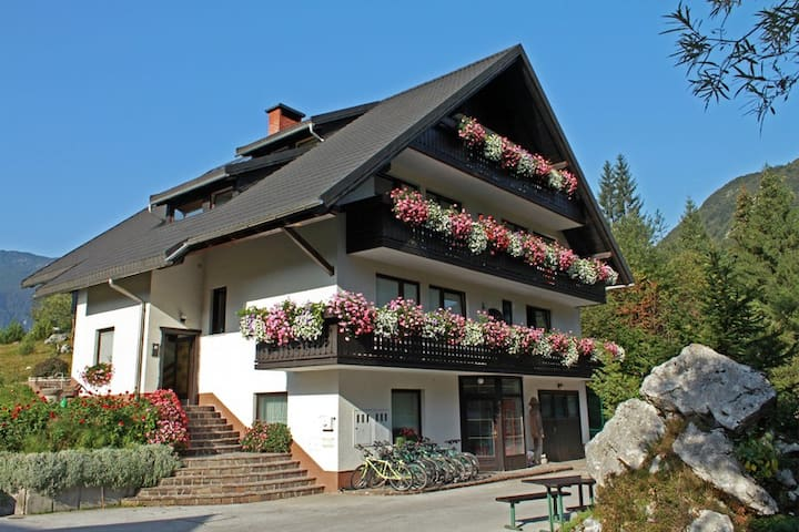 Apartment in National park - Bohinj - Stara Fužina - Apartemen