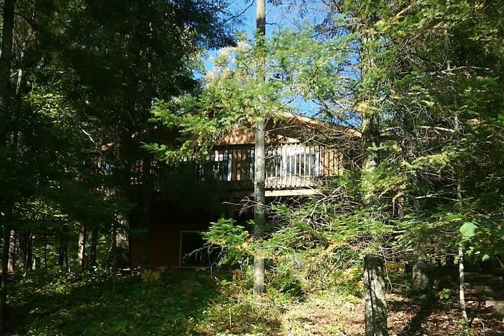 Tom's Family Friendly Cabin on Roosevelt Lake