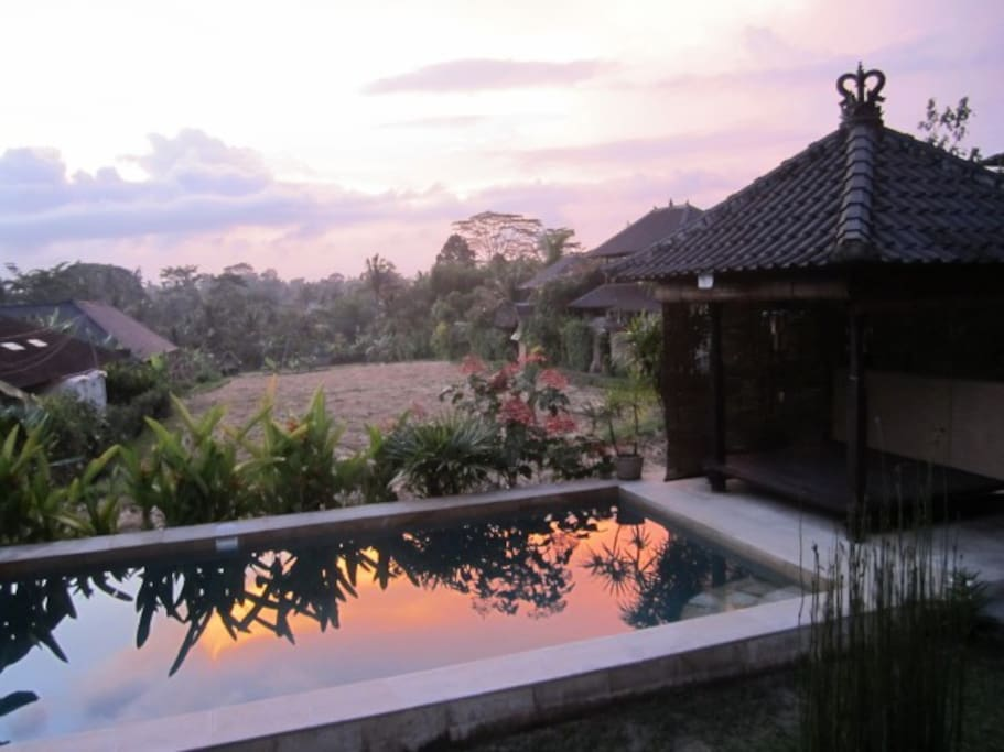 Pool, ricefield and sunset views