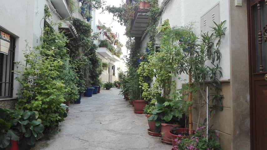 Coqueto apartamento en Parque Natural de Cazorla