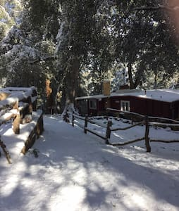 Beautiful Palomar Mountain Getaway - NEW RENTAL - Palomar Mountain - Cottage