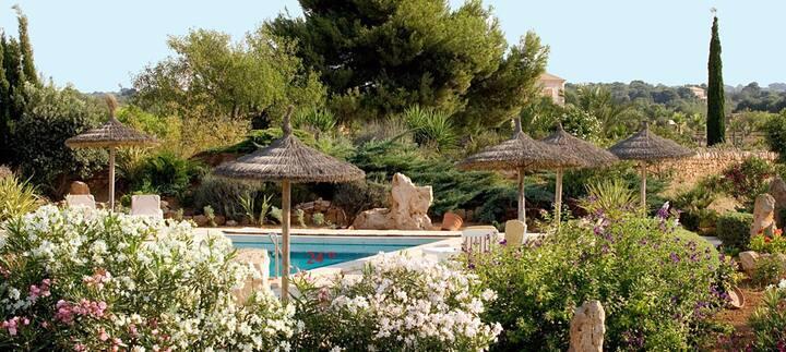 Hab Standard con terraza SesSalines
