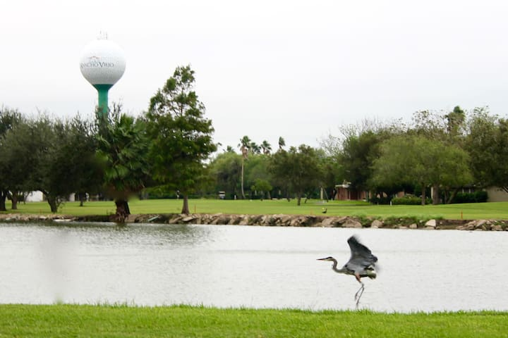 Tropical birding paradise and golf! Brand new listing.