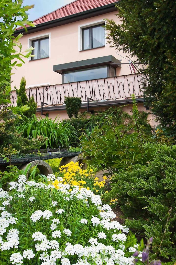 Great apartment in Zwickau