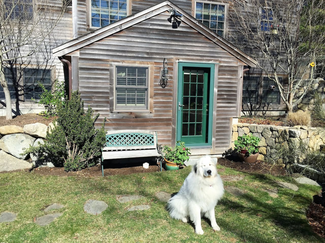 Front yard and guest entrance and your greeter Marney