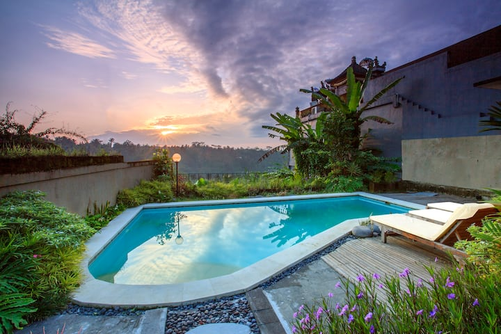 Ubud view villas with private pool