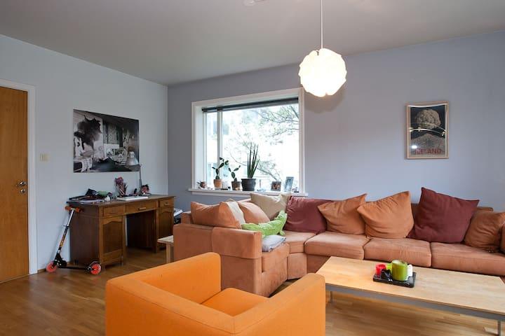 Spacious apartment - Reykjavik - Flat