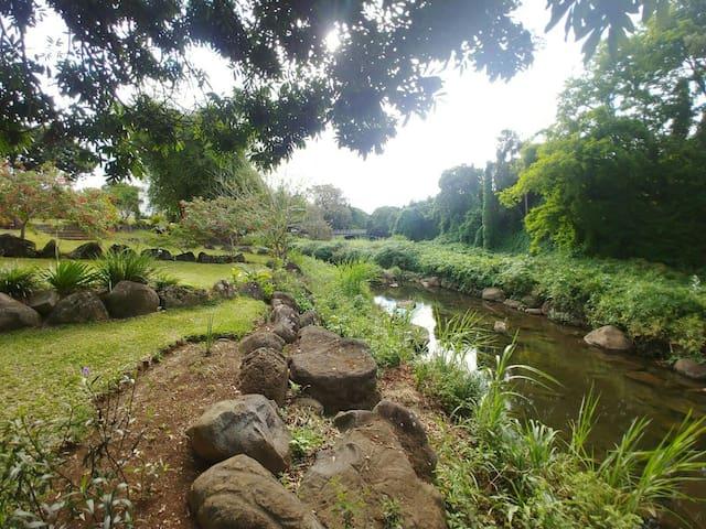 Nature Living & Working @ Ebène,Mauritius