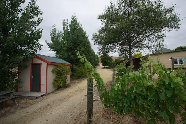 Cabin in Thyme Hill Vineyard