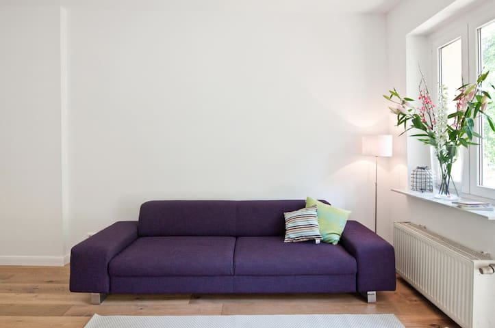 Couch which opens up for 2 guests
