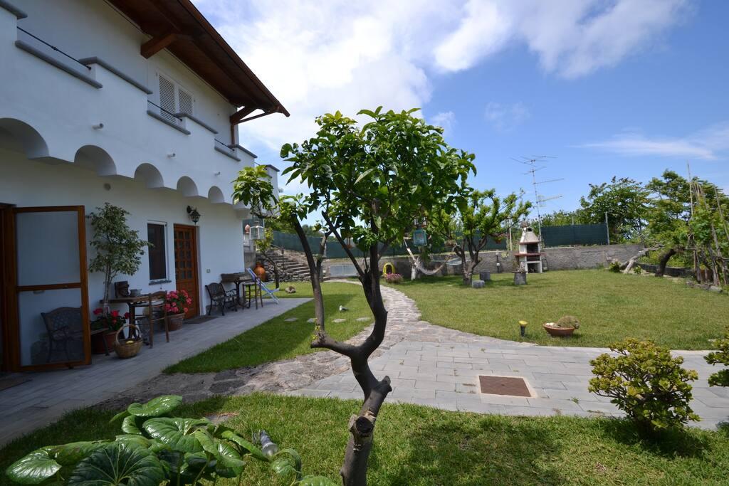 Ischia la casa delle tue vacanze ville in affitto a lacco ameno campania italia - La casa delle vacanze ...