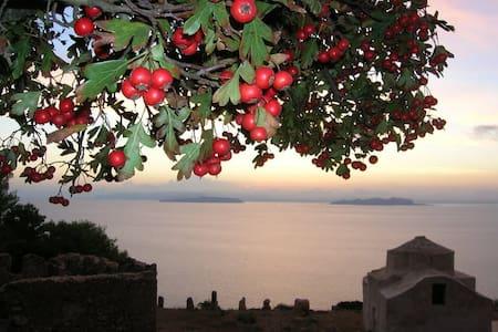 marettimo perla del mediterraneo - Marettimo - Bed & Breakfast