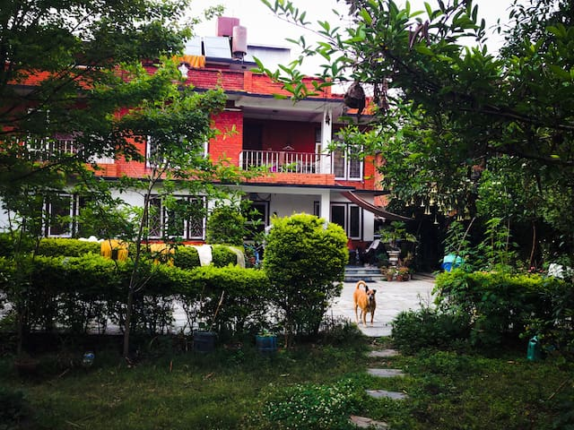 House with garden, trees n Flowers - Kathmandu - Hus